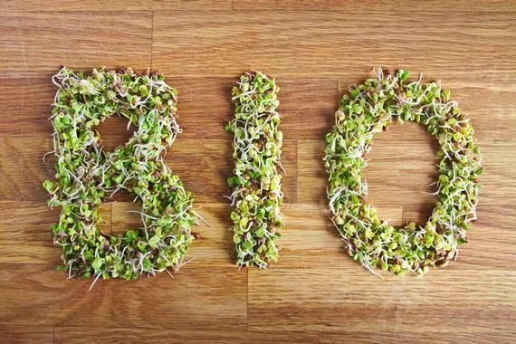logistique produits bio, céréale